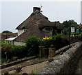 SY3392 : The Thatch, Silver Street, Lyme Regis  by Jaggery