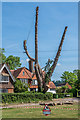 TQ2250 : Tree felling by Ian Capper