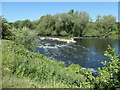 SE3218 : Rapids on the River Calder, from downstream by Christine Johnstone