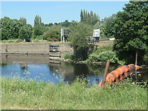 SE3118 : Don't boat down the Calder, use Thornes Cut by Christine Johnstone