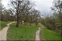 TQ5739 : The Old Racecourse, Tunbridge Wells Common by N Chadwick