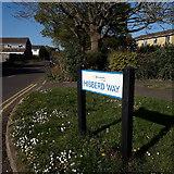 SZ0794 : Ensbury Park: Hibberd Way by Chris Downer