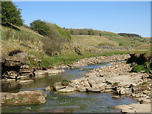 NY7346 : The River Nent below Far Hilltop by Mike Quinn