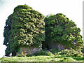 R9538 : Castles of Munster: Kilfeakle, Tipperary (1) by Garry Dickinson