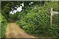 SX8059 : Junction near Bowden by Derek Harper