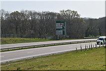 TQ6143 : Roadsign, A21 by N Chadwick