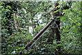SO6806 : Railway fencepost by John Winder