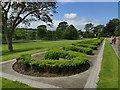 NJ9304 : Duthie Park:miniature topiary by Stephen Craven