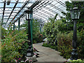 NJ9304 : Duthie Park: Provost's Lamps in the winter gardens by Stephen Craven