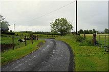 H5572 : A sweeping bend along Roeglen Road by Kenneth  Allen