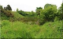 NO3601 : Myreside Pond by Bill Kasman