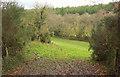 SS4922 : Meadow by Huntshaw Mill by Derek Harper