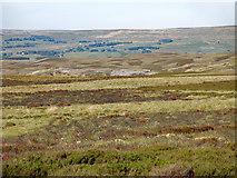 NY6739 : Moorland east of the Maiden Way by Mike Quinn