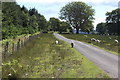 ST2397 : Road by Craig Wen Woodland to cattle grid by M J Roscoe