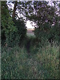 TF0841 : Path goes this way by Ian Paterson