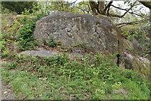 TQ5639 : Elephant Rock, Toad Rocks by N Chadwick