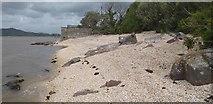 NX8354 : Cockle shell beach at Kippford by Colin Kinnear