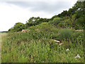 SP1704 : Rubble from former RAF Southrop NW site by Vieve Forward