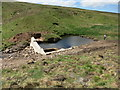 NS2860 : Capture dam on tributary of River Garnock by Julian Thomas