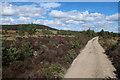 NJ0113 : Track towards Forest Lodge by Hugh Venables