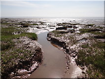 TF4548 : Saltmarsh meets seashore by Ian Paterson