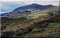 SH5846 : Rough hill slopes with Moel Ddu beyond by Trevor Littlewood
