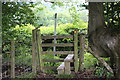ST1995 : Stile from corner of field to minor road by M J Roscoe