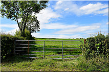 H5366 : Gate and countryside, Laragh by Kenneth  Allen
