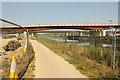 TF0070 : Water Rail Way / Route 1 by Richard Croft