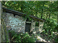 SE1224 : Ruined building below Sutcliffe Wood Lane, Hove Edge by Humphrey Bolton
