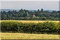 TQ2350 : Reigate Heath Windmill by Ian Capper