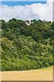 TQ2252 : Towards the Buckland Hills by Ian Capper
