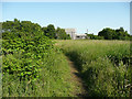 SE1224 : Path across the hay field on the site of Stubbins Quarry, Hove Edge by Humphrey Bolton