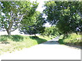 TG1321 : Church Lane, Brandiston by Adrian Cable