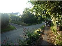 SO3958 : Path by Bridge Street (Pembridge) by Fabian Musto