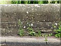SK6547 : Bench mark, Wash Bridge, Epperstone by Alan Murray-Rust
