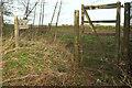 ST0035 : Path and bridleway by B3224 by Derek Harper