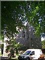 R6500 : Castles of Munster: Monanimy , Cork (1) by Garry Dickinson