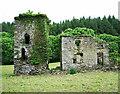 W4346 : Castles of Munster: Monteen, Cork (4) by Garry Dickinson