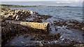 J5584 : Outfall near Groomsport by Rossographer