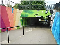 NS5574 : New artwork at Gavin's Mill Underpass (3) by Richard Sutcliffe