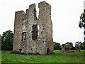 N7760 : Castles of Leinster: Moymet, Meath (2) by Garry Dickinson