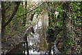 TL4555 : Hobson's Brook by N Chadwick