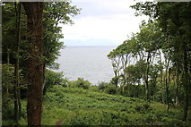 NS2209 : View from the Pagoda, Culzean Country Park by Billy McCrorie
