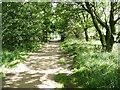 SE2106 : Path around the reservoir, Ingbirchworrth by Humphrey Bolton