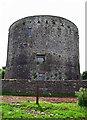 R5954 : Castles of Munster: Rathurd, Limerick (1) by Garry Dickinson