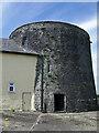 R5954 : Castles of Munster: Rathurd, Limerick (2) by Garry Dickinson