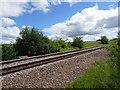 SE5531 : Hambleton railway station (site), Yorkshire by Nigel Thompson