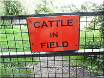 SU8799 : Cattle in Field notice near Prestwood Park by David Hillas
