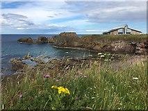 NT6779 : Dunbar Harbour Mouth by Jennifer Petrie